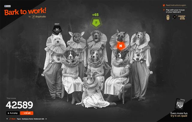 Dog Studio | Bark to Work